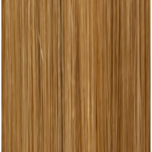 "18"" Holly Hagan Clip In Human Hair Extensions #27 Caramel Blonde"