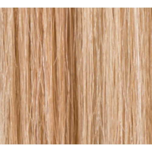 Coloured hair extensions clip in hair lush hair extensions 12 clip in human hair extensions full head 16613 honey blonde pmusecretfo Images