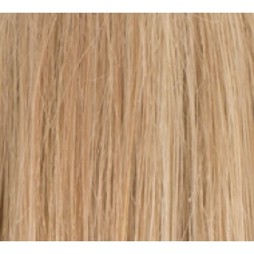 "16"" Deluxe DIY Weft (Clips Not Attached) Human Hair Extensions #18/613 Ash Blonde Highlights"