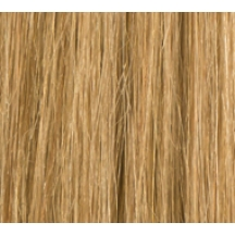 "18"" Deluxe Double Wefted Clip In Human Hair Extensions #27 Caramel Blonde"