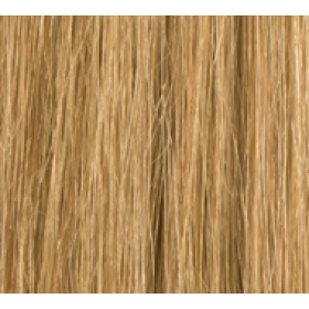 "24"" Deluxe Double Wefted Clip In Human Hair Extensions #27 Caramel Blonde"