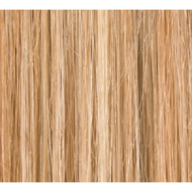 "16"" Clip In Human Hair Extensions FULL HEAD #27/613 Caramel Blonde Highlights"